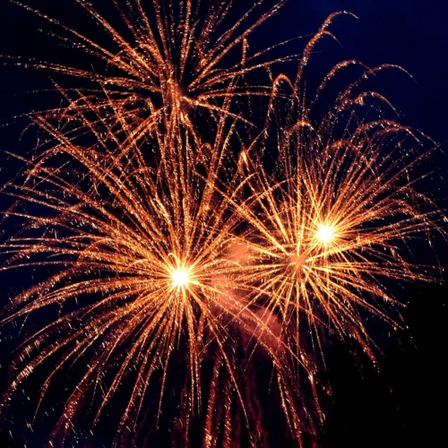 VIRTUAL WKFA – Enter the New Kwoon!