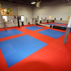 Adult Novice II Grading, Sat. Feb 4, 2017, 12:30pm